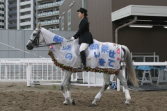 190702 誘導馬 七夕飾りの衣装-01