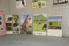 190703 馬産地・北海道日高PRイベント-02