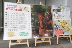 190703 馬産地・北海道日高PRイベント-07