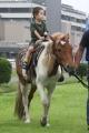 190721 ポニー・サラブレッド乗馬体験-05