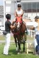 190825 ポニー・サラブレッド乗馬体験-01
