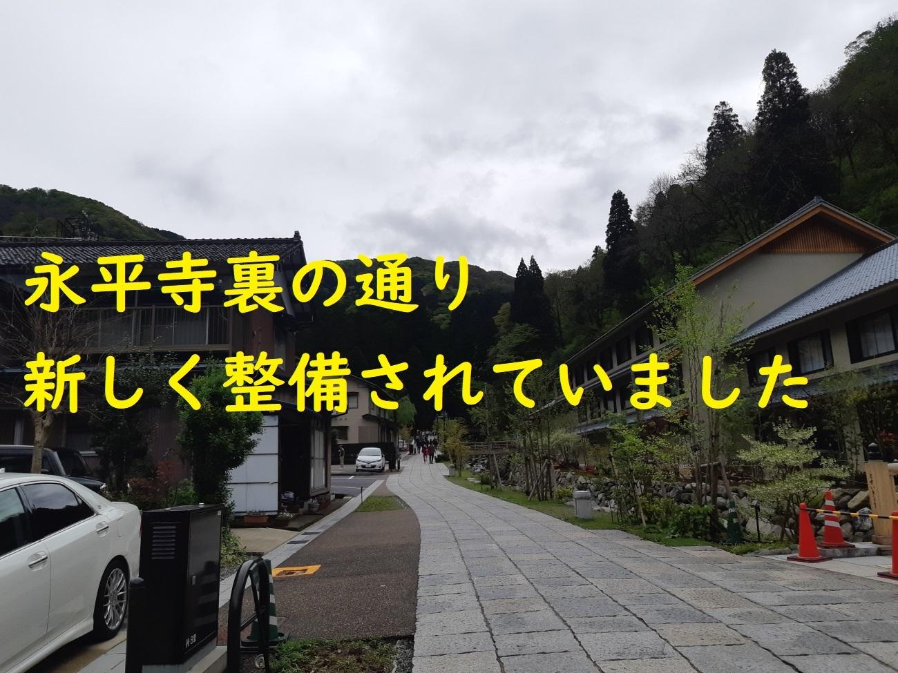 20190430_100130.jpg