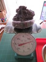 盆栽鉢 (2)