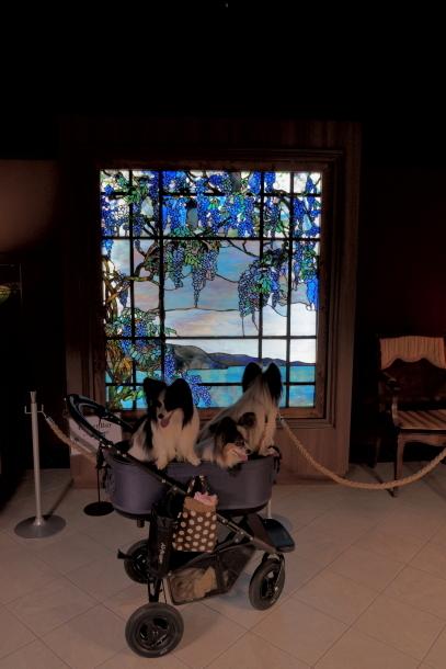 伊豆ニューヨークランプミュージアム00076952