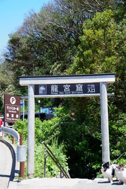 下田 大室山00077167