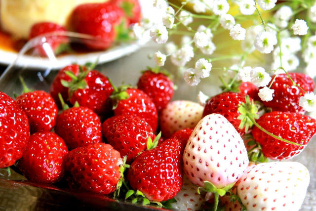 苺の季節#1