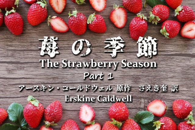 苺の季節Part1