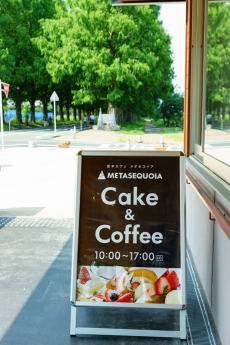 metasequoia_3.jpg