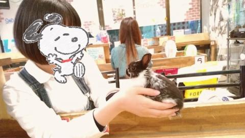 もなか ブログ 小動物5