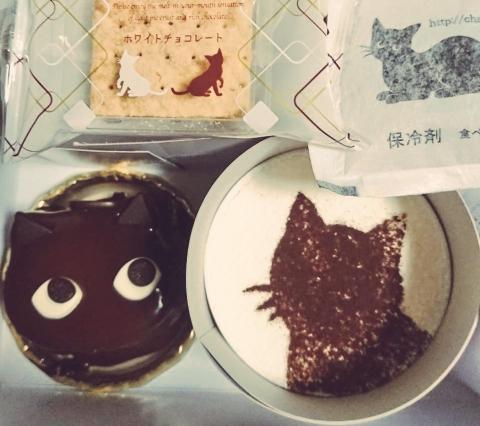 みか20190715②ブログ猫ケェキ