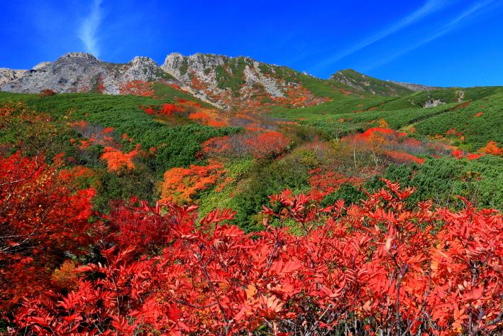 紅葉彩られた霊峰御岳山