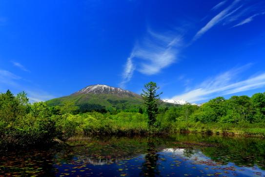 43-青空に雲映える信濃富士