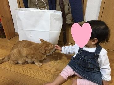 チビMちゃんとライちゃん