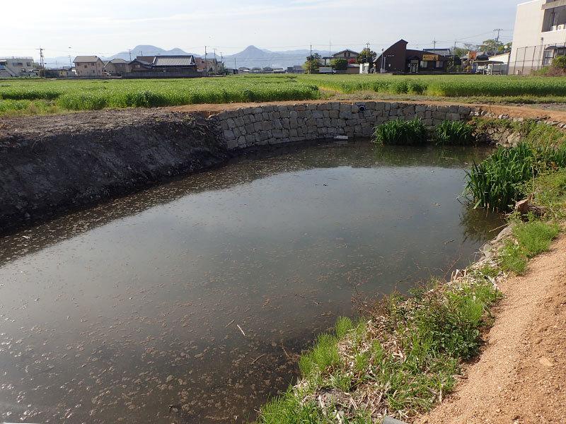 ushi6.jpg