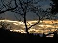 森から垣間見る夕陽