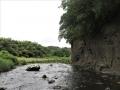 崖のある川