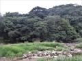 洞窟のある川岸