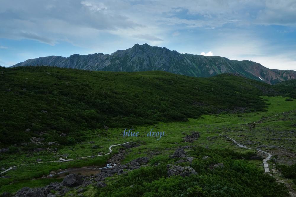 聳える水晶岳*
