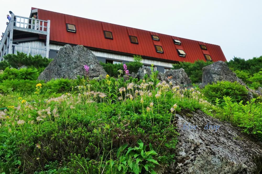 花に囲まれる山荘*
