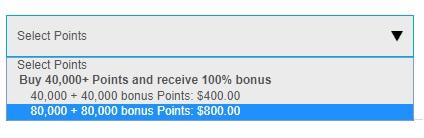 1ヒルトンオーナーズでポイント購入 100%ボーナスキャンペーン1