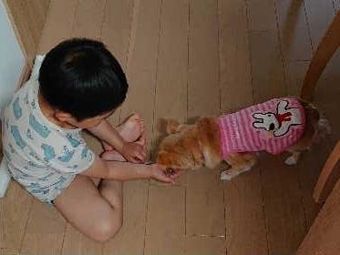 blog2019051602.jpg