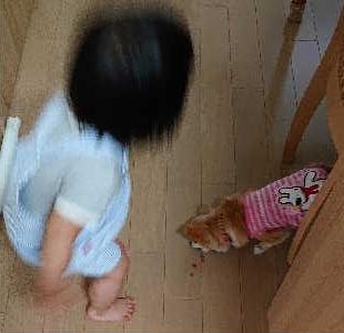 blog2019051603.jpg