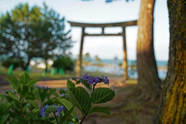 190616住吉神社追加3