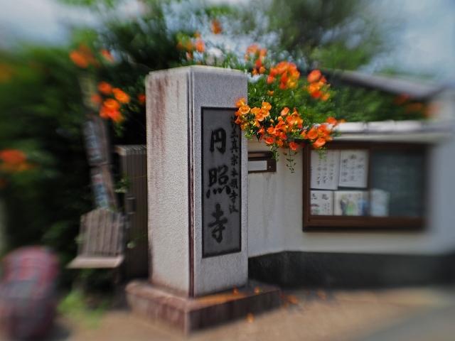 190622円照寺48