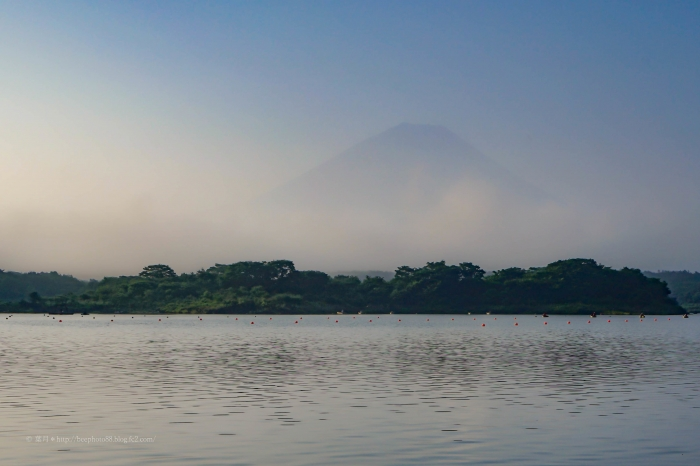 富士たまゆらDSC04786 (2)