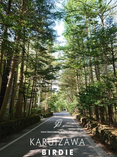 2019新緑の軽井沢