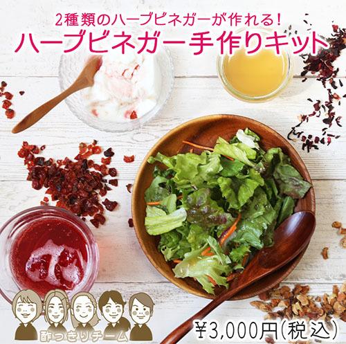vinegar_kit_01-1.jpg