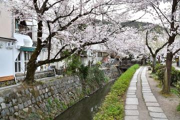 京都201904(16)