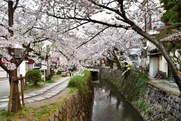 京都201904(18)