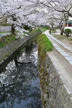京都201904(22)
