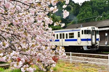 厳木駅201904(4)