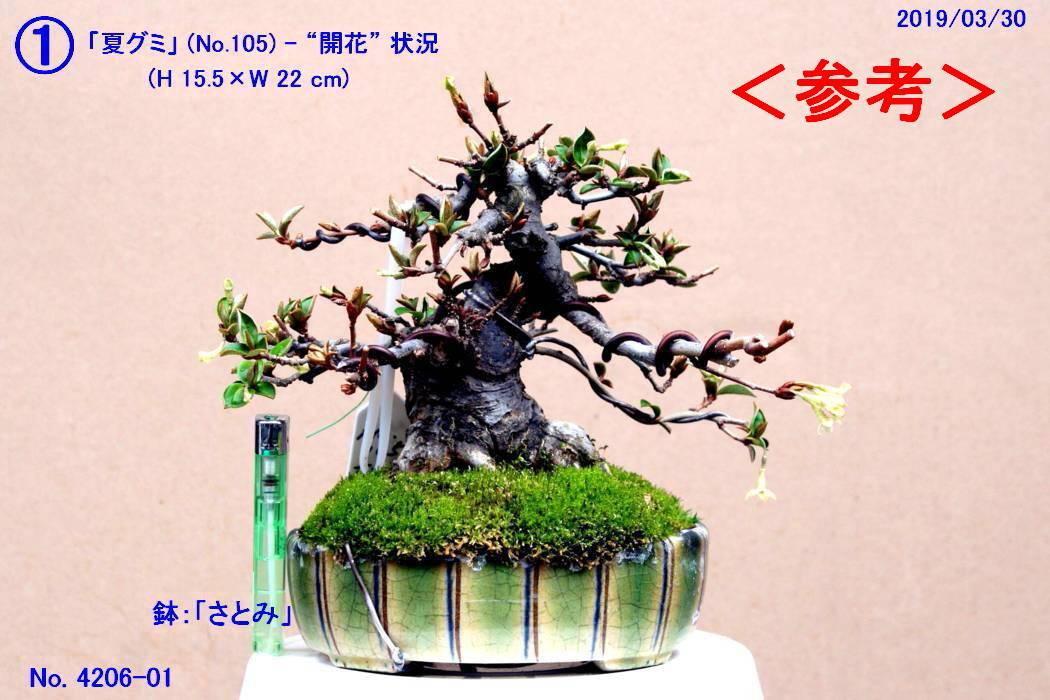 FC0133-03.jpg