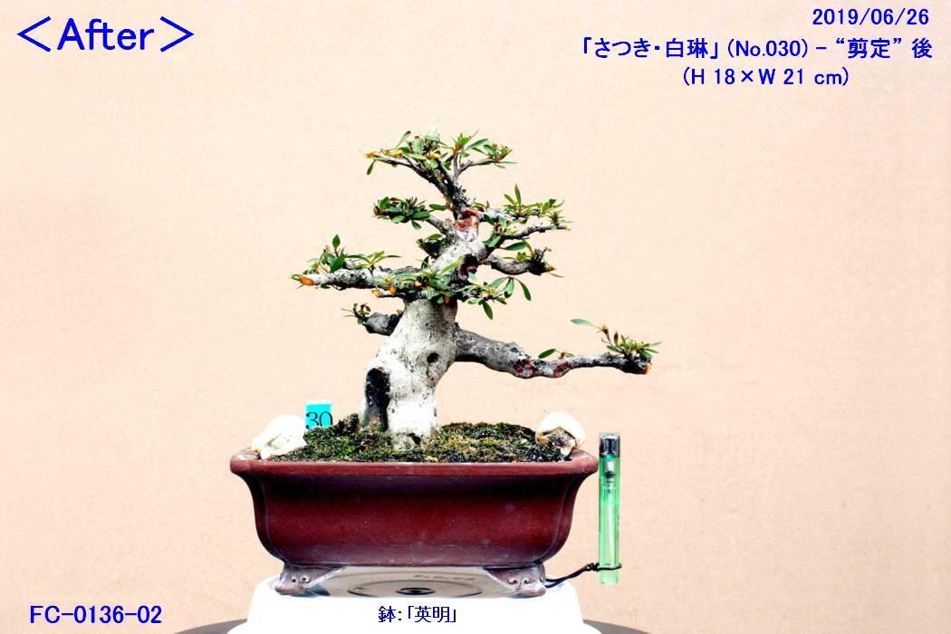 FC0136-02.jpg