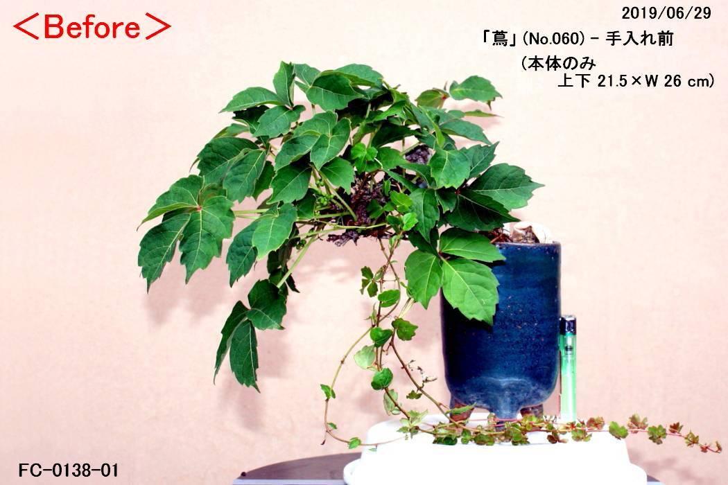 FC0138-01.jpg