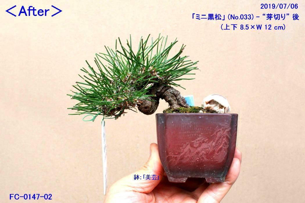 FC0147-02.jpg