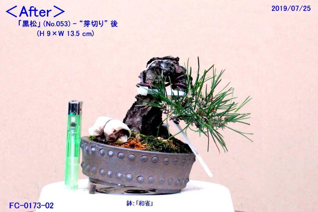 FC0173-02.jpg