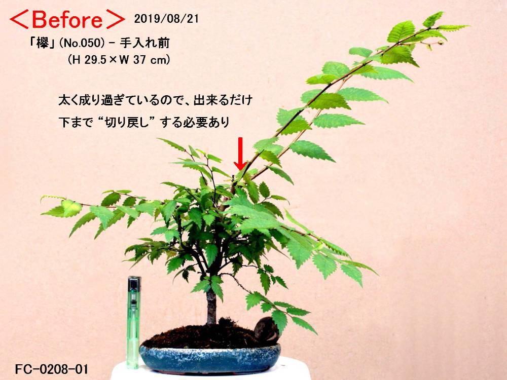 FC0208-01.jpg