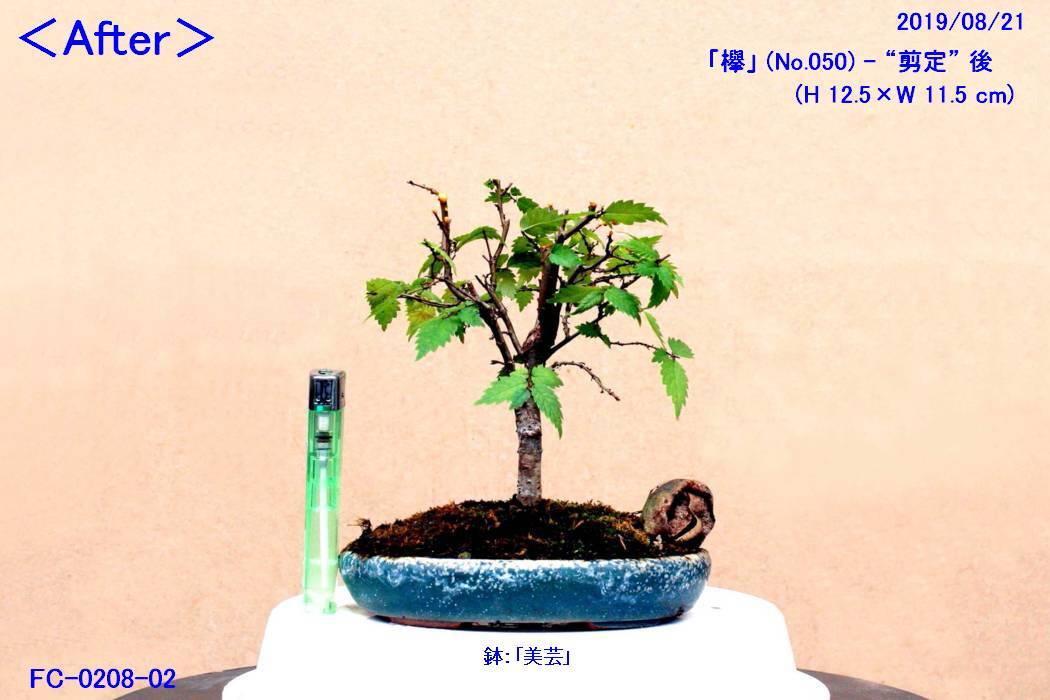 FC0208-02.jpg