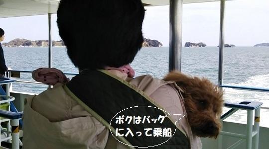 観光船内のマッキー
