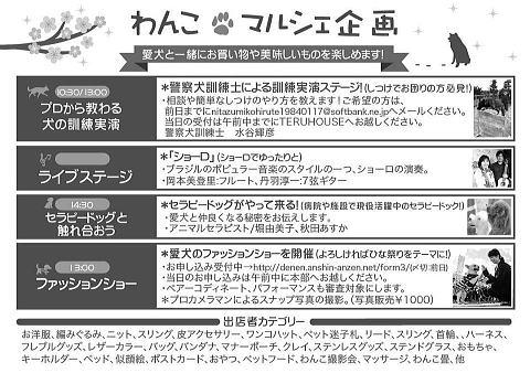 木曽三川2019年5月-2