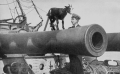 800px-PSM_V88_D071_Cannon_of_british_warship_hms_canopus_1916.png