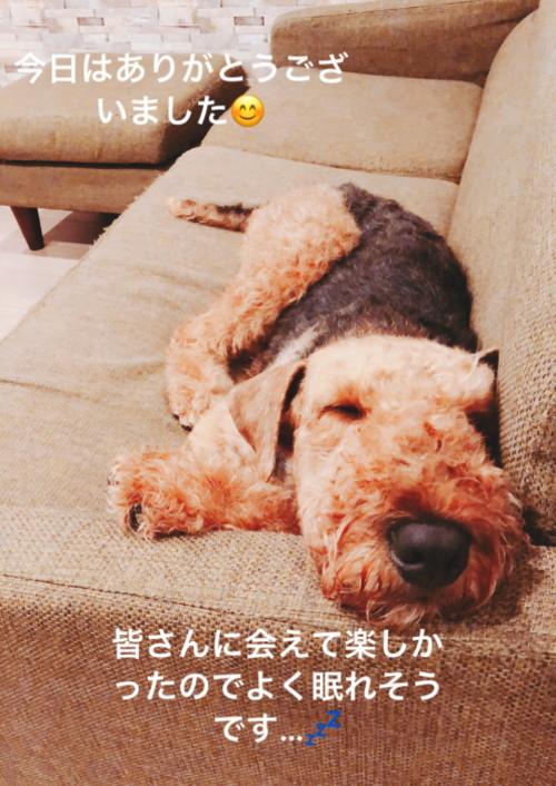 S__46751747.jpg
