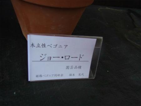 syukusyo-RIMG0225_20190630173152ff5.jpg