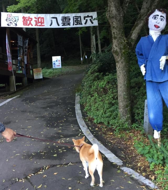 atsui_7346.jpg