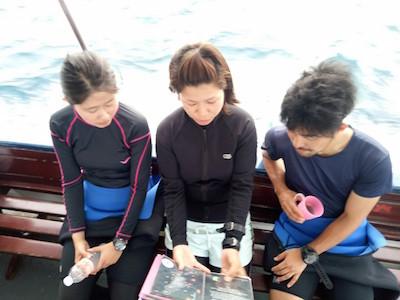 タオ島 ダイビング ダイブマスタートレーニング