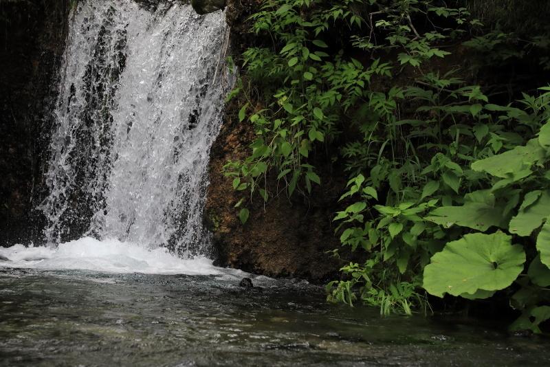 3711  小さな滝
